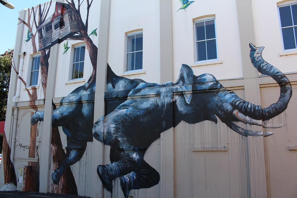 Urban lanesway street art murals in Toowoomba, Australia